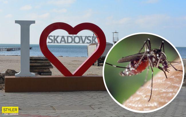 Курорты Украины оккупировали комары: спасения от них не предвидится