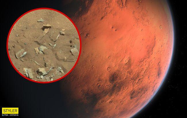 """На Марсі знайшли """"людську кістку"""": розкрилася несподівана правда"""
