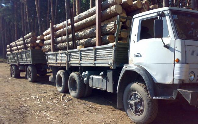 Запрет наэкспорт леса-кругляка нарушает обязательства Украины— ЕС