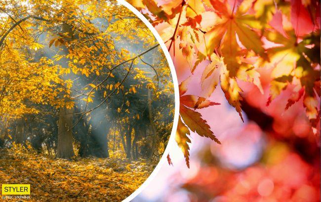 Тепла й сонячна, але є нюанс: синоптик уточнила погоду на 1 жовтня
