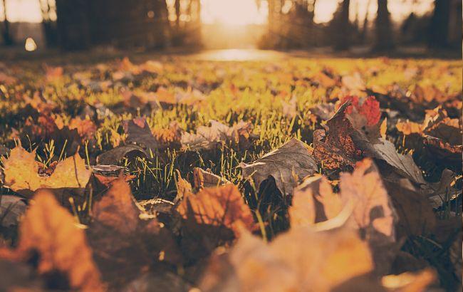 Второе бабье лето: синоптик удивил прогнозом на ноябрь