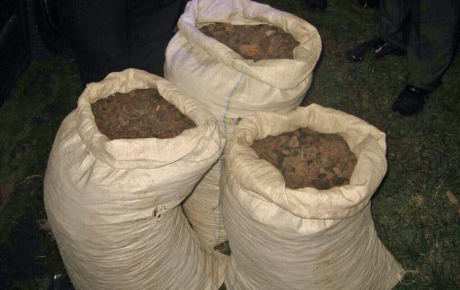 Фото: у жителя Ровно изъяли три мешка янтаря