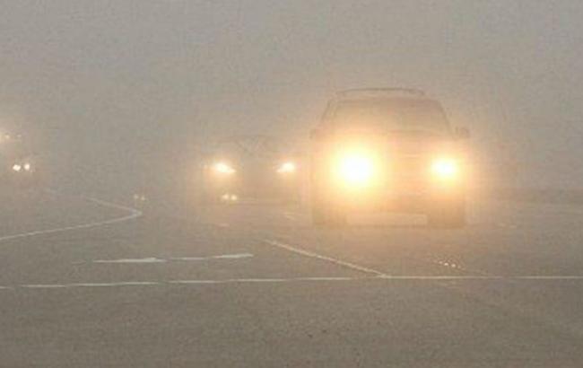 Фото: туман на дорогах
