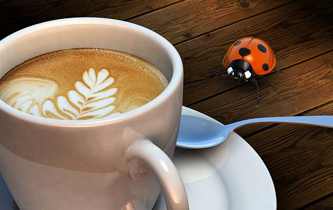 Иллюстративное фото (pixabay.com)