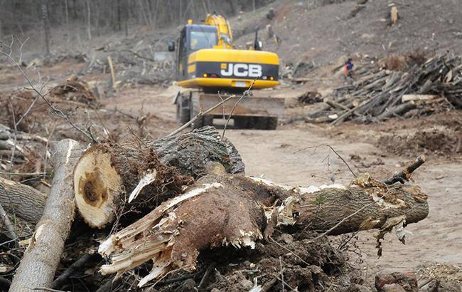 Фото: Возле Обухова продолжается вырубка леса (mk.ru)