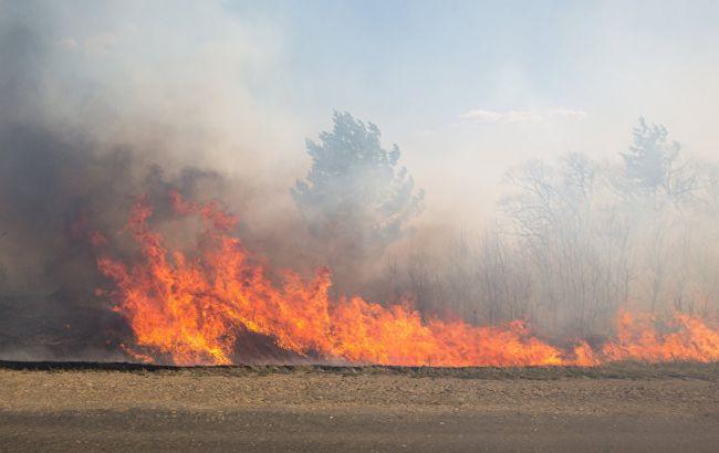 Фото: пожежна небезпека в Україні