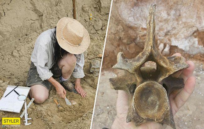 Под Одессой нашли останки доисторического носорога: в сети разгорелись баталии