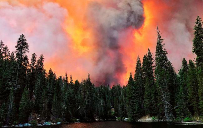В США количество жертв лесных пожаров возросло до 33