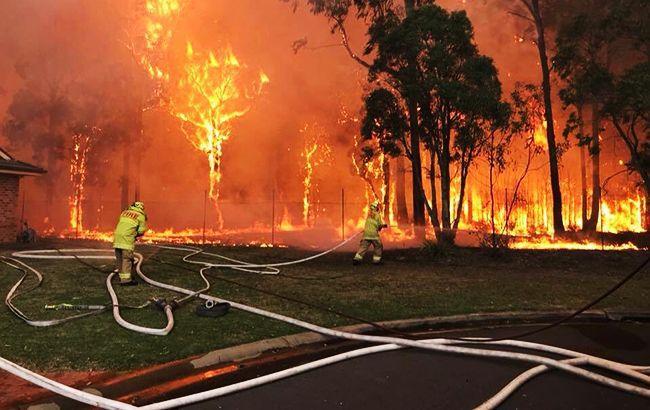 Фото: пожар в Австралии (twitter.com/NSWRFS)