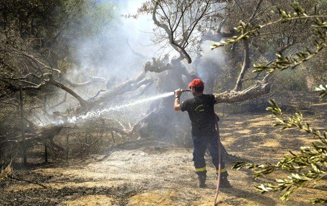 Греция все еще борется с лесными пожарами. Премьер страны извинился за неудачи в тушении