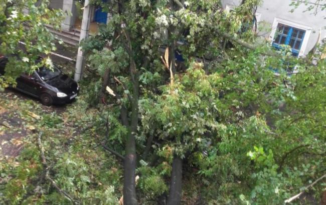 Фото: ураган в Румунії (digi24)
