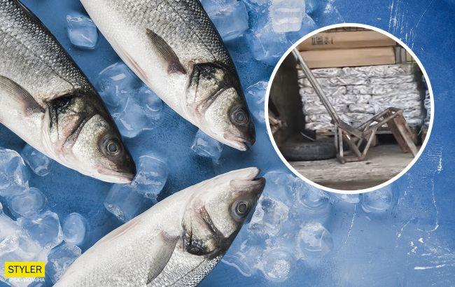 """""""В грязь уронить могут"""": сеть шокировало хранение рыбы в Киеве"""