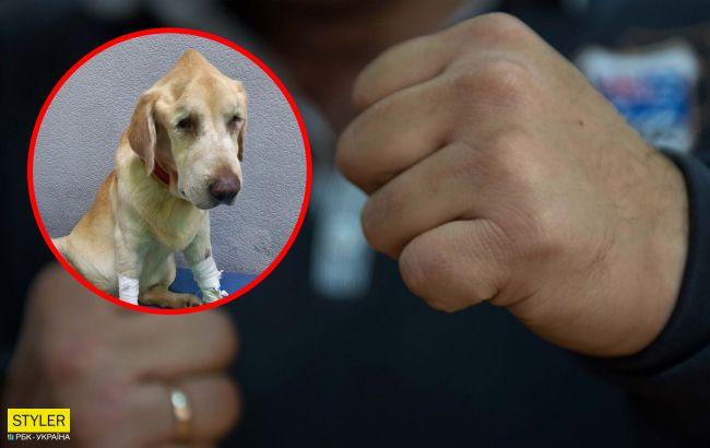 В Черкассах мужчина жестоко избил собаку: не хотела гулять