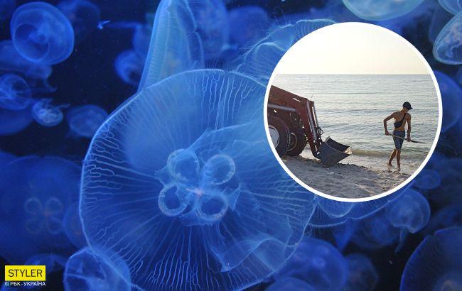 В Кирилловке обиделись на митинги из-за медуз и показали, как решают проблему (видео и фото)