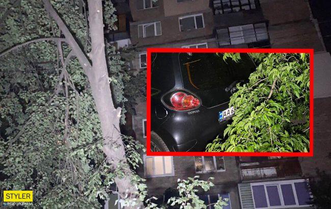 В Киеве рухнуло дерево: авто оказались в ловушке (фото)