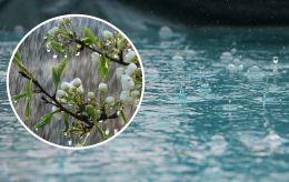 Доставайте зонты: синоптики рассказали, где пройдут дожди с грозами