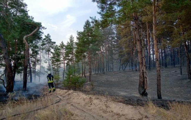 Пожежі в Луганській області: керівництво управління ДСНС підозрюють у недбалості