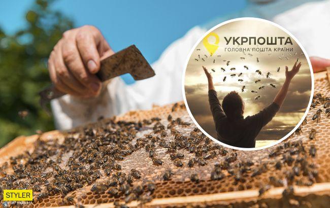 """""""Убитые"""" Укрпочтой пчелы воскресли. И это не шутка (видео)"""