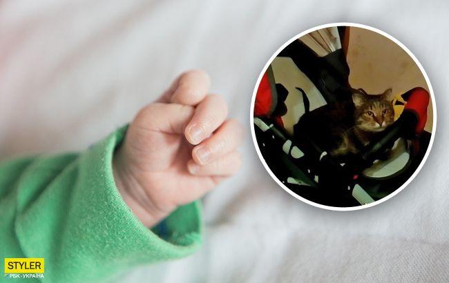 Под Винницей кот задушил 9-месячного ребенка: все подробности
