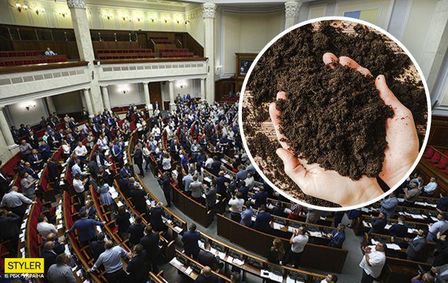 В Украине стартует продажа земли: названа стоимость гектара