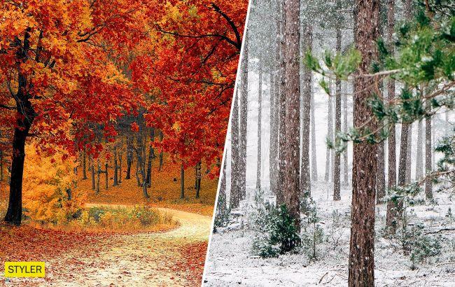 Бабье лето в ноябре и снег под Новый год: украинцев удивили прогнозом