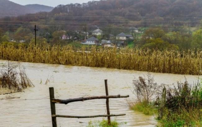 Фото: Закарпаття затопило (tsn.ua)