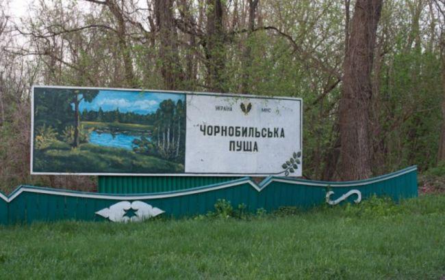 Под Чернобылем загорелась сухая трава, пожар локализован, - ГСЧС