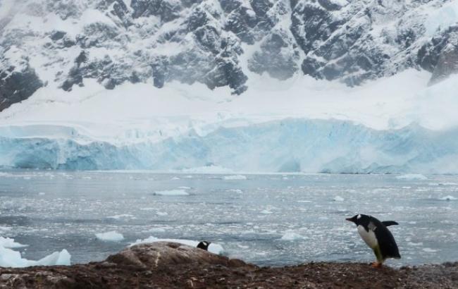 Ученые узнали новые факты об Антарктиде