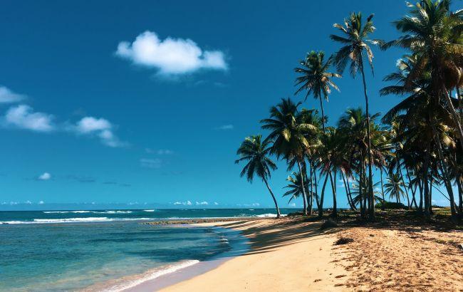Отпуск под пальмами: туры в популярные экзотические страны станут дешевле в новом сезоне