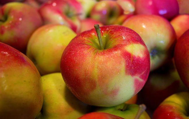 Ціни на яблука в Україні рекордно впали: названо причини і вартість