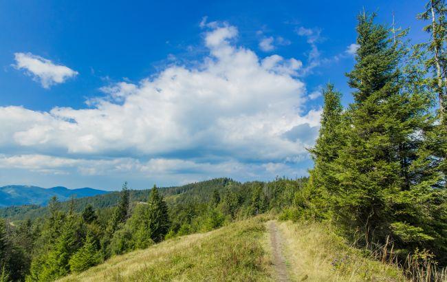 Сніг на вершинах та мінлива погода: що варто знати, збираючись на відпочинок у Карпати влітку