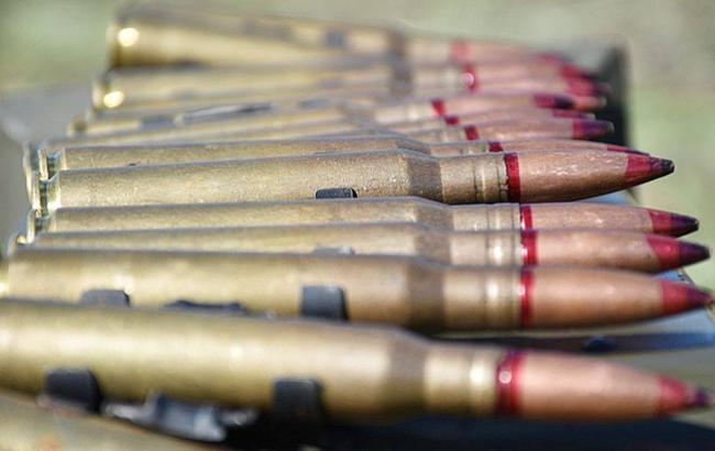Фото: патрони (pixabey.com)