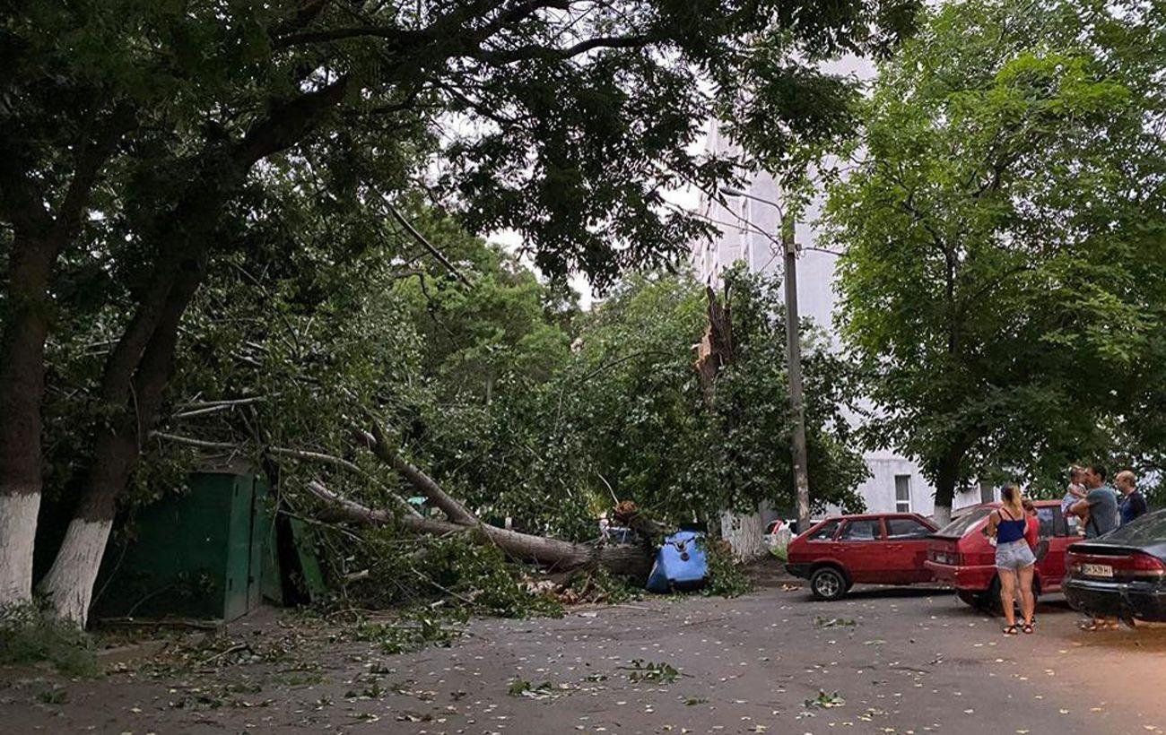 Двоє постраждалих та обрив електромереж: наслідки урагану в Одесі