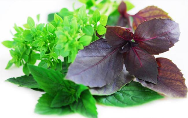 Фото: Привычный набор трав на кухне (facebook.com)