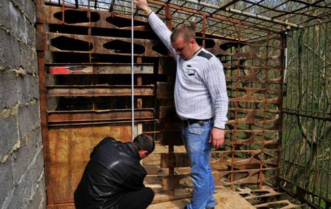 Из питомника во Львовской области исчезли медведи