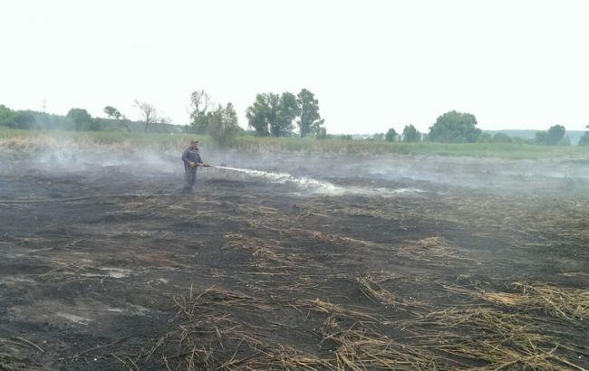 Фото: под Киевом  горит около 1,5 га торфа