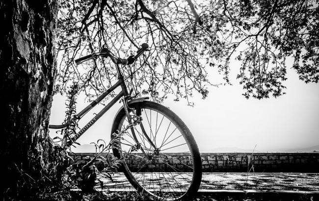 Фото: Велосипед (pixabay.com/Atlantios)