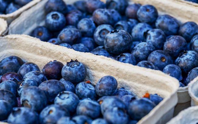 Чорниця з радіацією: експерти перевірили ягоди з ярмарків і стихійних базарів