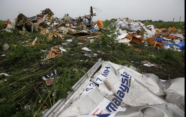ВНидерландах посоветовали два варианта судебного процесса навиновниками катастрофы МН17