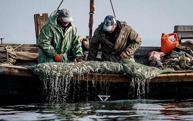 У Росії заявили про визнання українськими рибалками факту браконьєрства