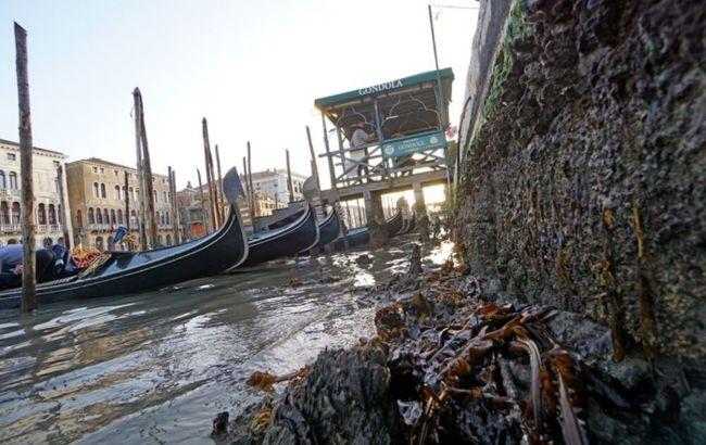 В Венеции после декабрьского наводнения пересохли каналы: что произошло