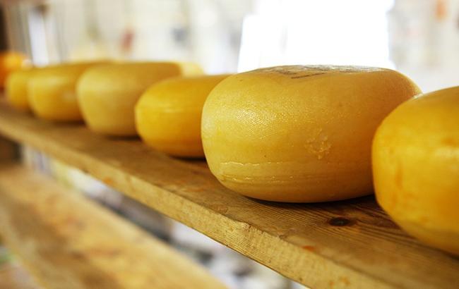 В РФ заподозрили Беларусь в поставках украинского сыра