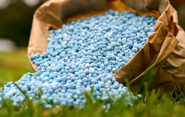 Фото: мінеральні добрива – один з ключів до успіху сільського господарства
