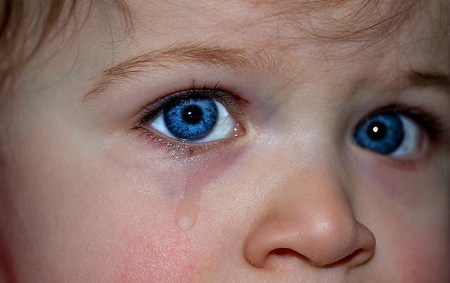 Фото: блогер розповів дитині, чому українці ненавидять Росію (pixabay.com)