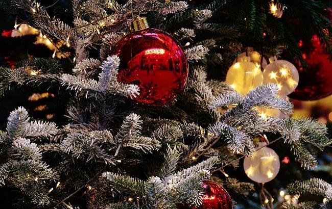 Фото: 13 января в Украине отмечают Старый Новый год (pixabay.com/alexas_fotos)