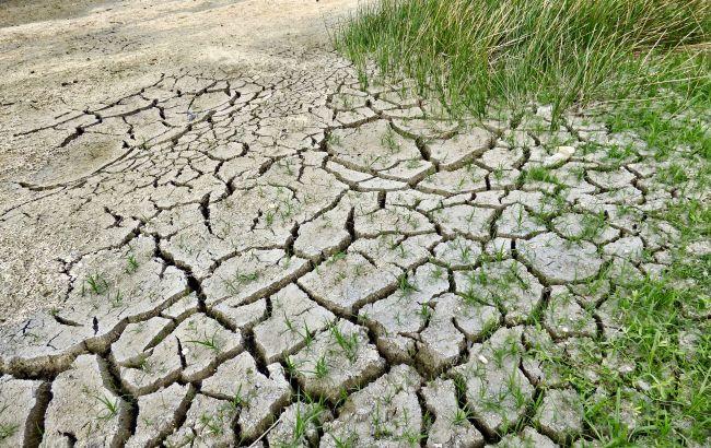 Влітку в Україні буде ще спекотніше: кліматолог приголомшила прогнозом