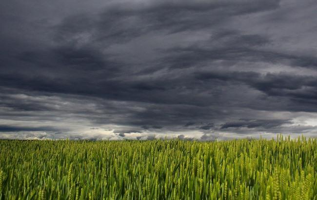 Дощі і спека: синоптики дали прогноз на 14 червня