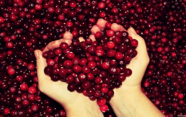 Фото: Ягоди журавлини (Healthy Habits)