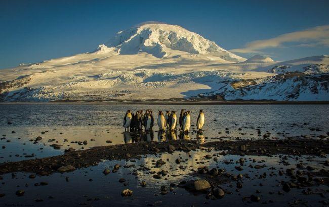 """""""Пронизывающий холод"""": как я жил на диком острове под вулканом и ледниками"""