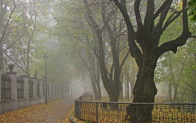 ВУкраїні збережеться тепла погода, вночі тавранці очікуються тумани